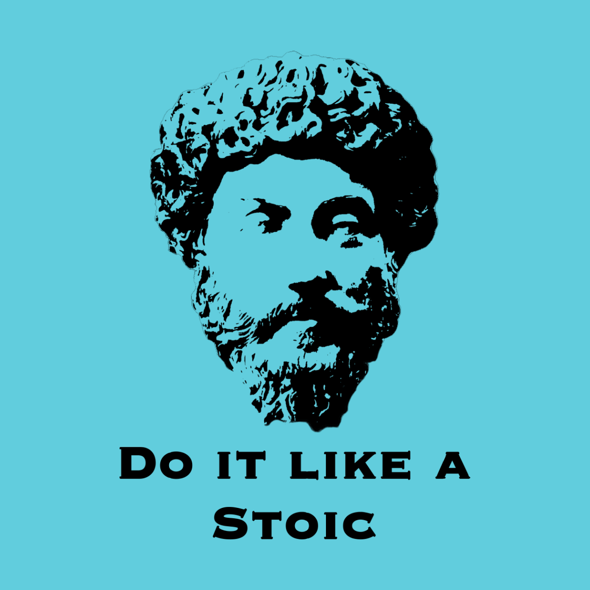 living like a stoic in the modern world