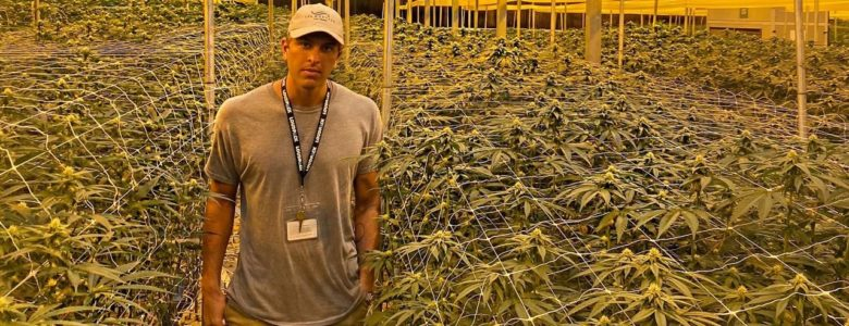 Woody Mooers CBD, cannabis