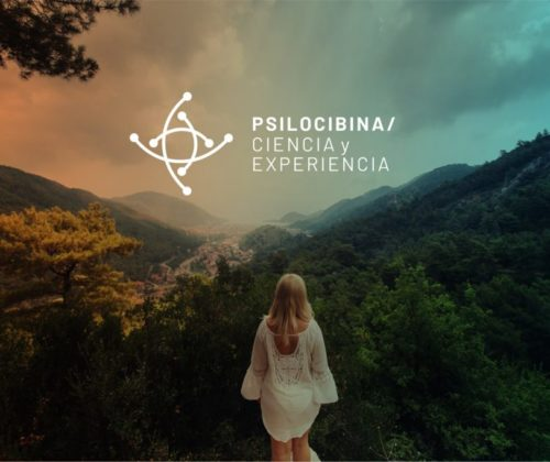 Psilocybin Science and Experience: Psychedelic scientific news in Spanish